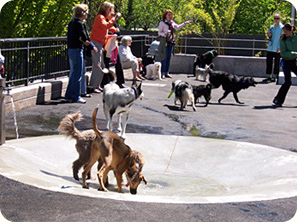 Kowsky Plaza Dog Run